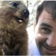 Roger Federer and animal