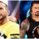 Roman Reigns and CM punk
