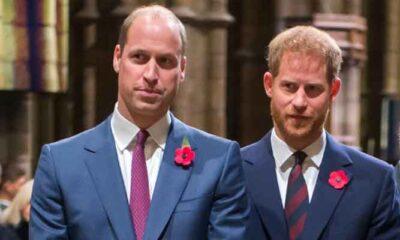 Prince Harry and William's bond