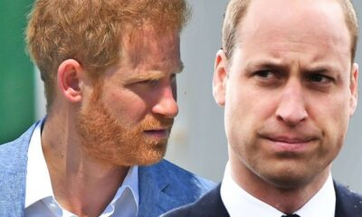 Prince William fuels Prince Harry claims